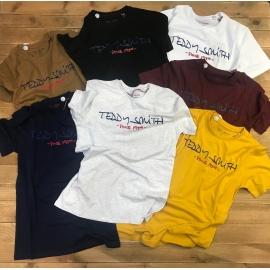 Teddy Smith tee shirt ticlass basic
